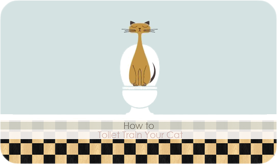 Toilet-Train-Your-Cat