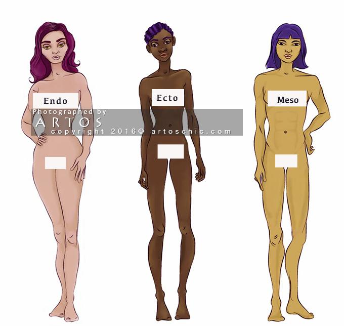 meso-ecto-endo-body-type
