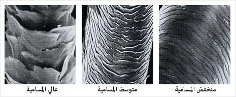_Hair-Porosity