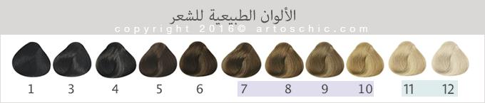 natural-hair-chart